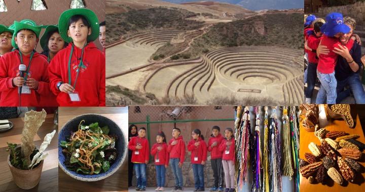 Collage Peru 2019.jpg